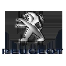 Peugeot Kombiinstrument Teile